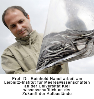 Prof. Dr. Hanel