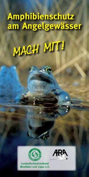 Flyer_Amphibienschutz_Titel